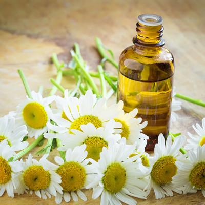 Chamomile - Flowers - Oil - Bottle - Chamomile Therapies - Clinical Aromatherapy, Berkhamsted