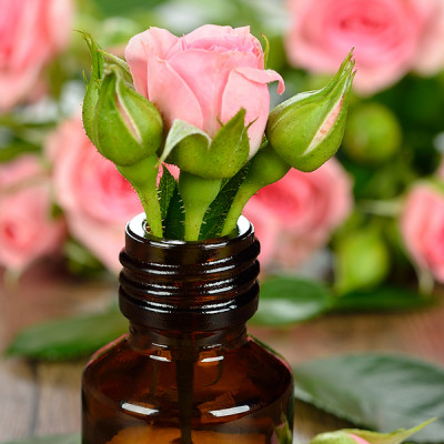 Rose - Flower - Bottle - Oil - Chamomile Therapies - Clinical Aromatherapy, Berkhamsted